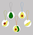on theme big set different types round avocado vector image