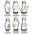 set of essential oils part 2 vector image vector image