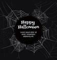 spider web vector image vector image