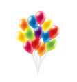 balloons isolated vector image
