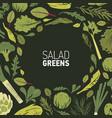 circular frame made of green plants salad leaves vector image vector image