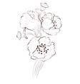 Poppy Lineart2 vector image vector image