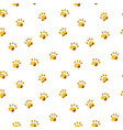 seamless pattern with gold paw isolated on white vector image