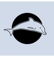 a dolphin vector image vector image