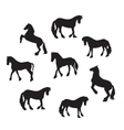 Black Horse Silhouette Set vector image vector image