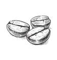 coffee bean symbol vector image vector image