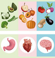 color banner poster vegetables and fruits with vector image vector image