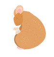 cute mouse cartoon reading a book vector image