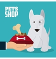 Pet shop and dog design vector image vector image