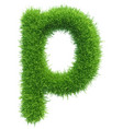 Small grass letter p on white background vector image