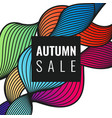 autumn discounts bright background vector image vector image