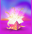 isolated colorful magic gift box with light vector image