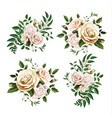 realistic watercolor rose bouquet leaf set vector image