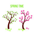 Spring time tree composition with flowers and