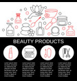 beauty and makeup concept beauty and makeup vector image