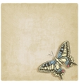 butterfly machaon old background vector image vector image