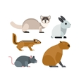 cartoon rodents animals set vector image
