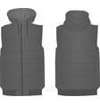 grey puffer vest vector image vector image