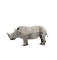 Rhino isolated vector image