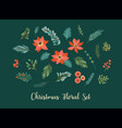 set christmas floral elements needles vector image
