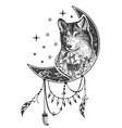 boho wolf tattoo or t-shirt print design vector image vector image