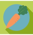 Carrot icon in the style of a flat design vector image vector image