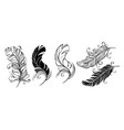 fluffy feathers vector image vector image