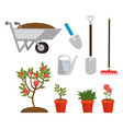 gardening elements and tools design vector image vector image