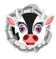 Head of the cow in hole vector image vector image