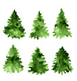set of green watercolor spruces fir tree vector image