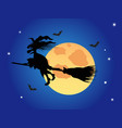 halloween witch on the blue night sky vector image