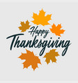 thanksgiving typography banner vector image vector image