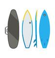 Surfing Board Set vector image