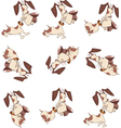 Cartoon Character Cute Hunting Dog vector image vector image