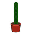 isolated cactus image vector image