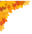 maple leaf in corner with blur effect vector image vector image