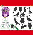 shadows game with owl characters vector image vector image