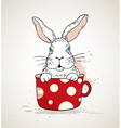 White rabbit in a red cup vector image vector image