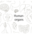 Different human organs set pattern vector image