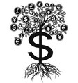 black money currency tree vector image vector image