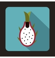 Dragon fruit icon in flat style vector image vector image