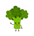 happy smilling cute broccoli vector image vector image