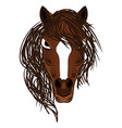 horse mascot cartoon head vector image
