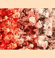 beige brown red spotted painted background vector image
