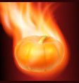burning pumpkin on dark background vector image vector image