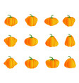 color pumpkin icons vector image vector image
