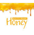 dripping honey pattern vector image vector image