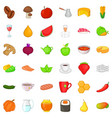 healthy diet icons set cartoon style vector image vector image