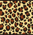 leopard seamless pattern for fabric textile design vector image
