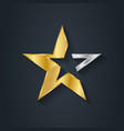 luxury gold star inlaid with a silver element vector image
